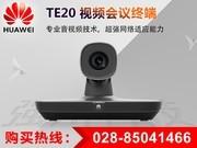 华为 TE20-12X