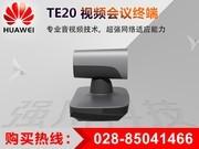 华为 TE20