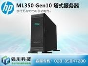 惠普(HP) ML350 Gen10 G10 HPE 5U塔式 大盘服务器主机 数据文件存储运算